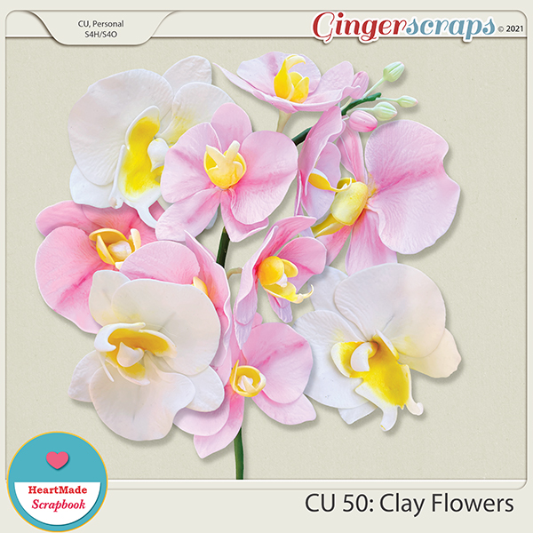 CU 50 - Clay flowers - orchid