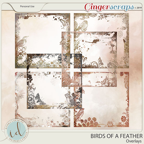 Birds Of A Feather Overlays by Ilonka's Designs