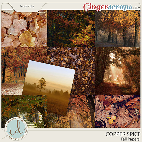 Copper Spice Fall Papers by Ilonka's Designs