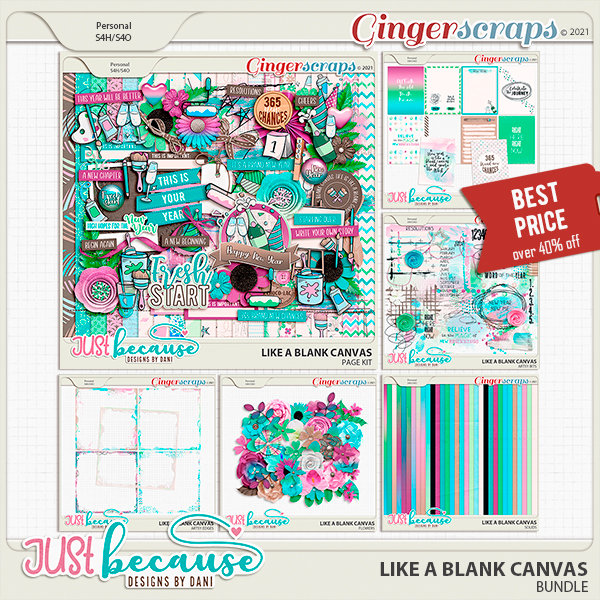 Like A Blank Canvas Bundle by JB Studio