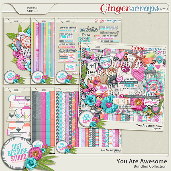 You Are Awesome Bundled Collection by JB Studio