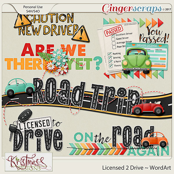 Licensed 2 Drive WordArt
