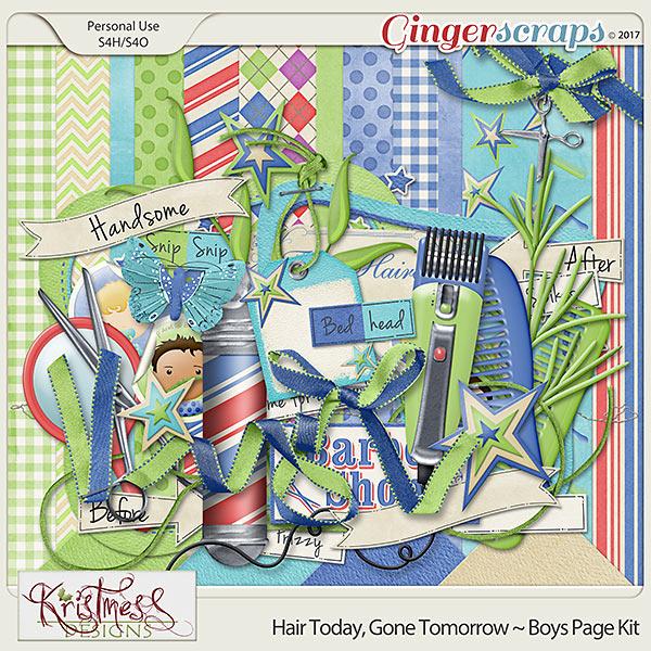 Hair Today, Gone Tomorrow ~ Boys Mini Kit