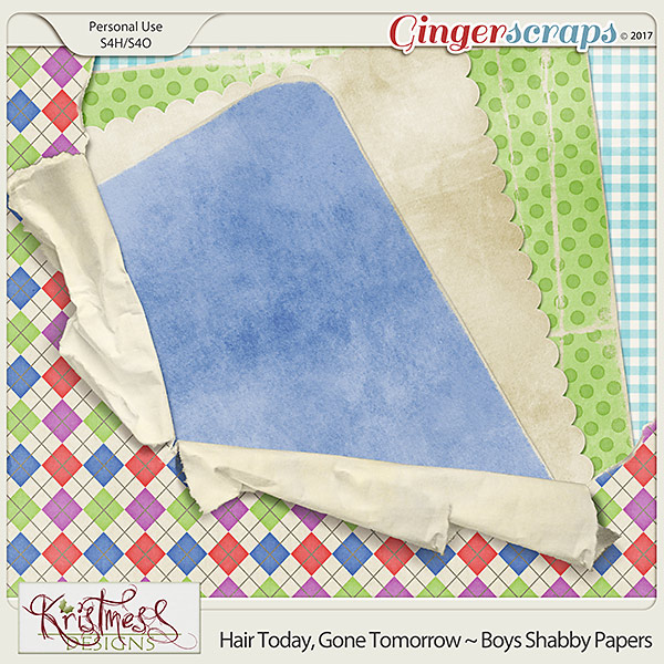 Hair Today, Gone Tomorrow ~ Boys Shabby Papers