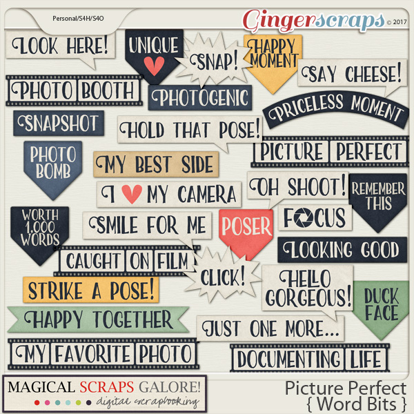 Picture Perfect (word bits)