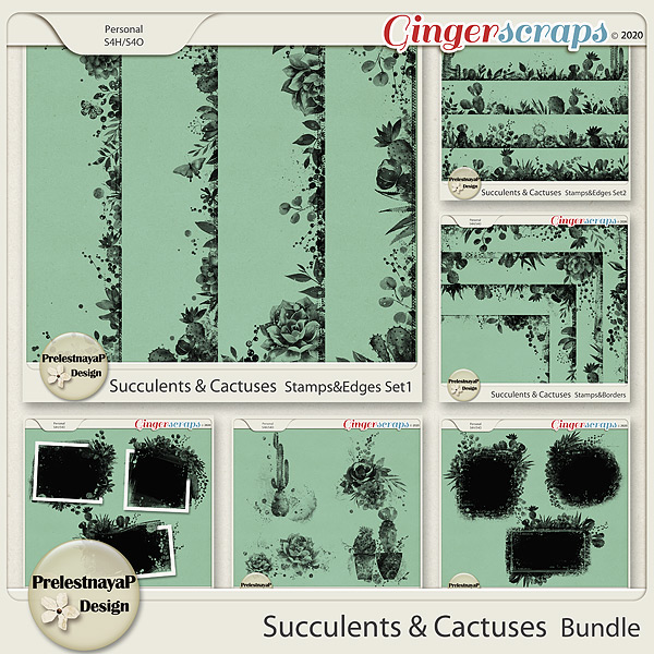 Succulents and Cactuses Bundle