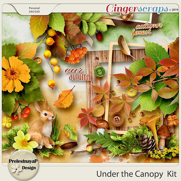 Under the Canopy Kit