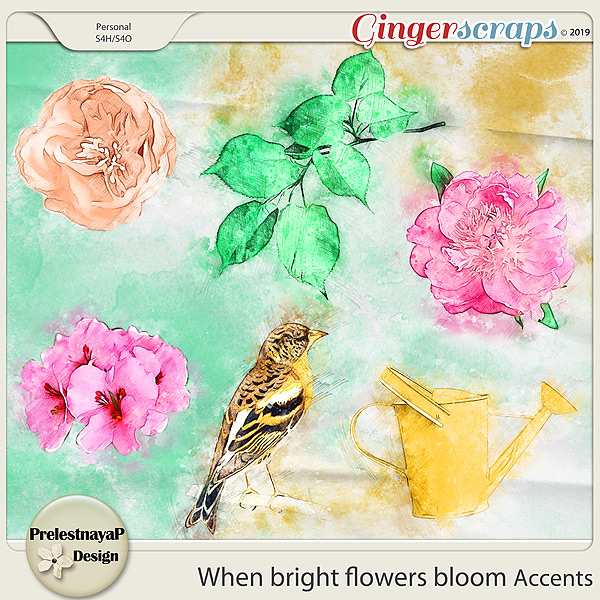 When bright flowers bloom Accents