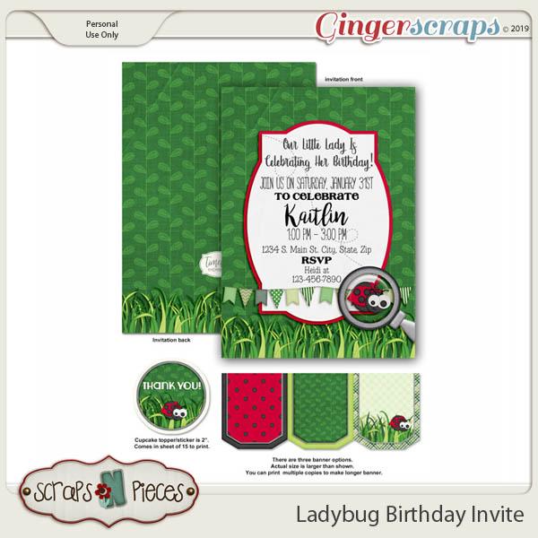 Ladybug Birthday Invitation by Scraps N Pieces