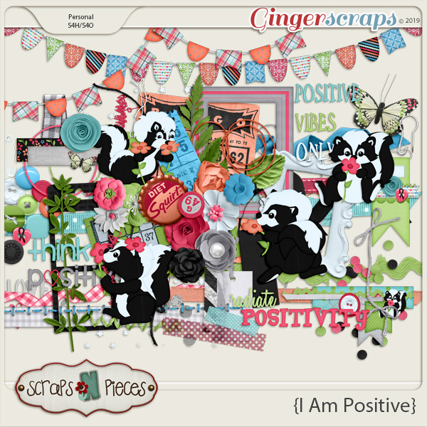 I Am Positive Embellishments by Scraps N Pieces