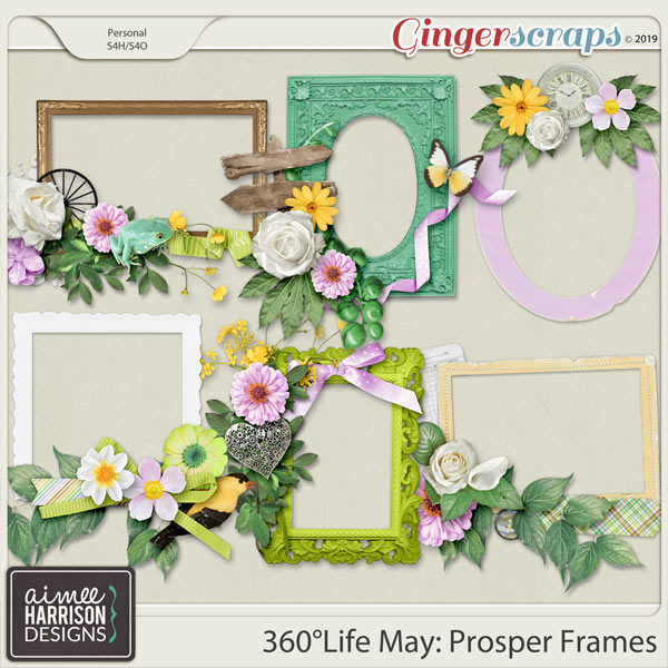 360°Life May: Prosper Frame Clusters by Aimee Harrison