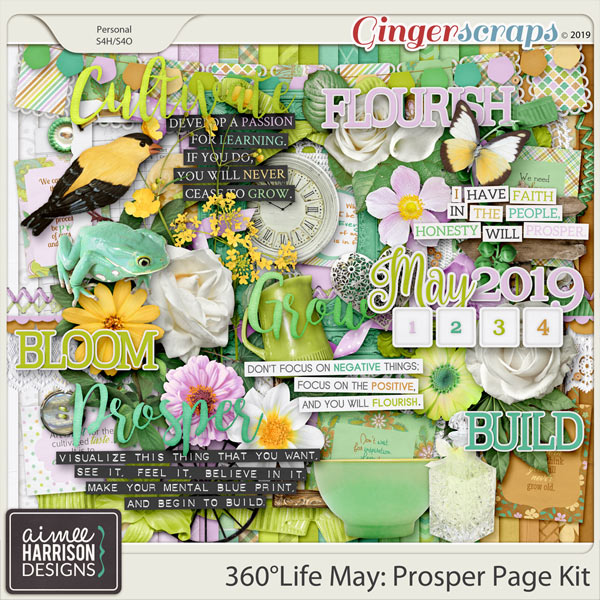 360°Life May: Prosper Page Kit by Aimee Harrison