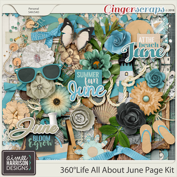 360°Life All About June Page Kit by Aimee Harrison