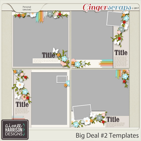 Big Deal #2 Templates by Aimee Harrison