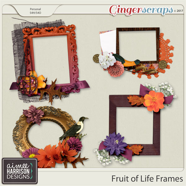 Fruit of Life Frame Clusters by Aimee Harrison