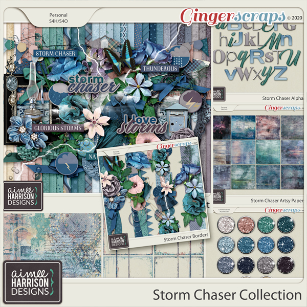 Storm Chaser Collection by Aimee Harrison