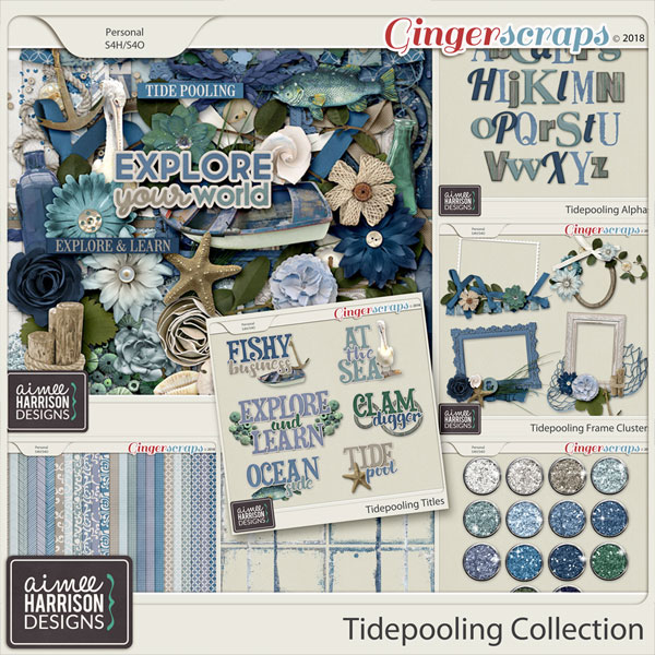 Tidepooling Collection by Aimee Harrison