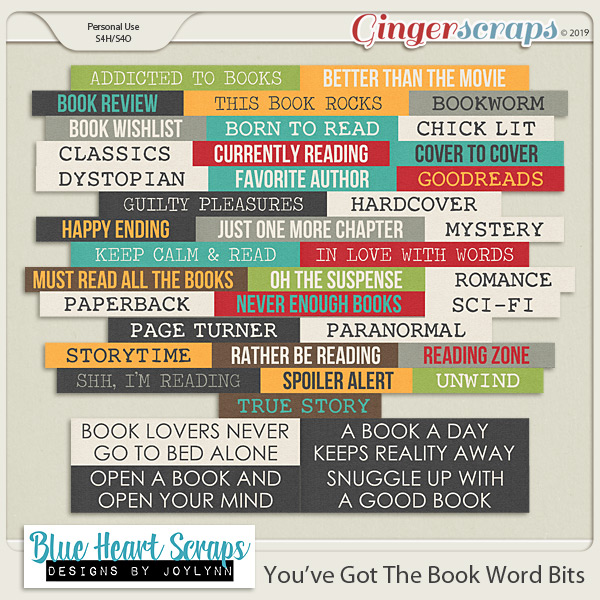You've Got The Book Word Bits