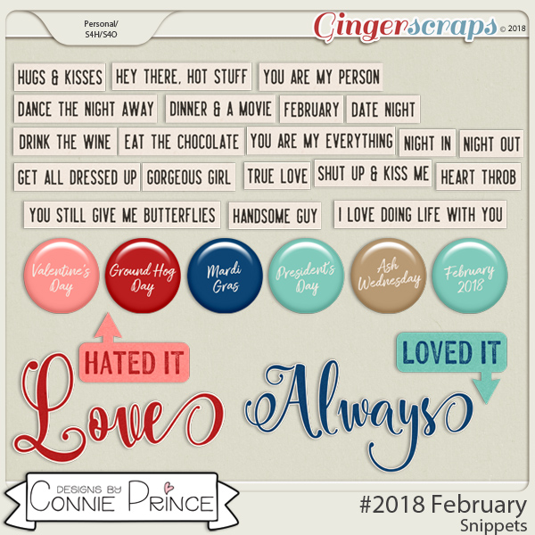 #2018 February - Snippets by Connie Prince