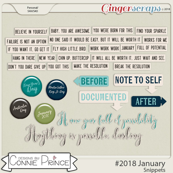 #2018 January - Snippets by Connie Prince