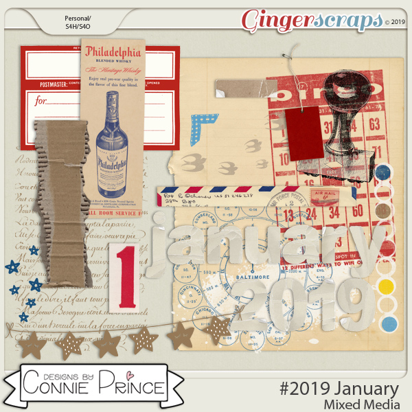 #2019 January - Mixed Media by Connie Prince