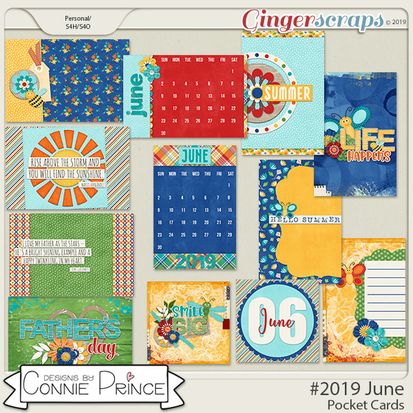 #2019 June - Pocket Cards by Connie Prince