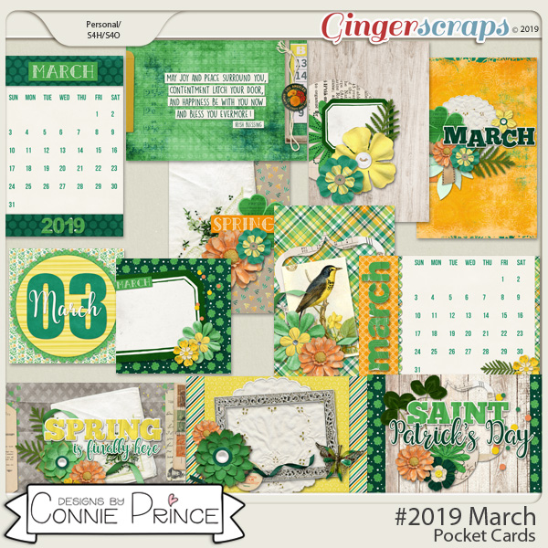 #2019 March - Pocket Cards by Connie Prince