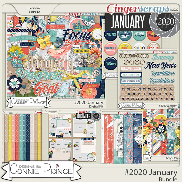 #2020 January - Bundle Collection by Connie Prince