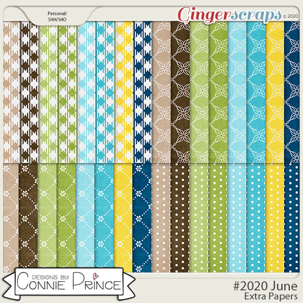 #2020 June - Extra Papers by Connie Prince