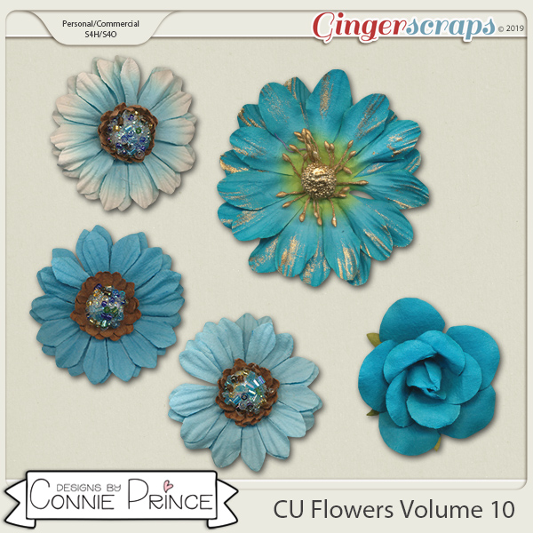 Commercial Use Flowers Volume 10 by Connie Prince