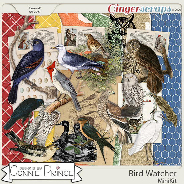 Bird Watcher - Birds MiniKit by Connie Prince