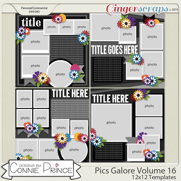 Pics Galore Volume 16 - 12x12 Temps (CU Ok) by Connie Prince