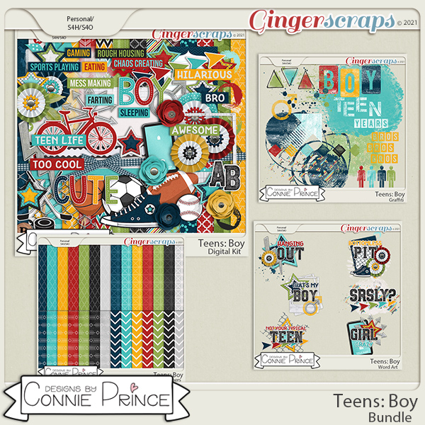 Teens: Boy - Bundle by Connie Prince