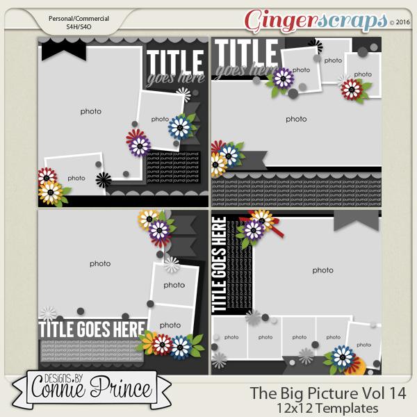 The Big Picture Volume 14 - 12x12 Temps (CU Ok)