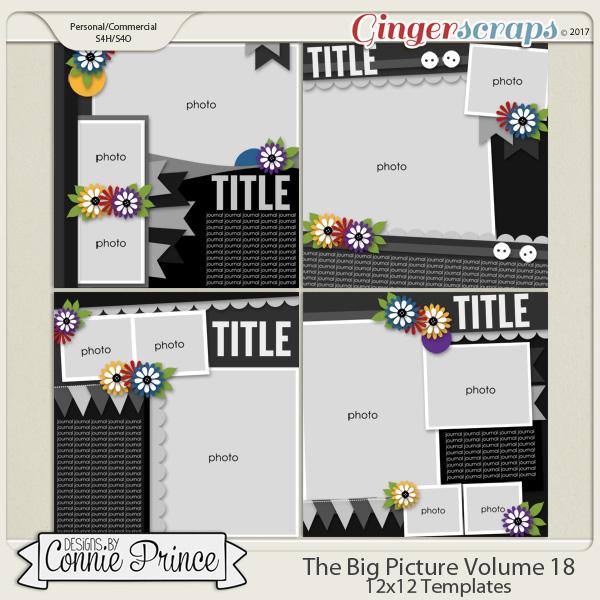 The Big Picture Volume 18 - 12x12 Temps (CU Ok)
