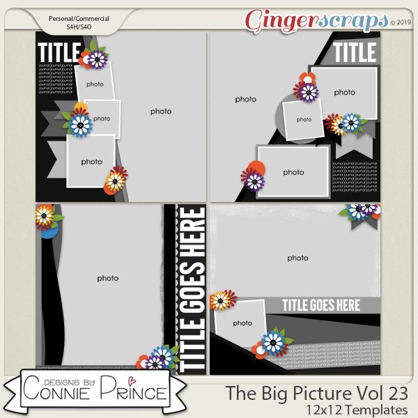 The Big Picture Volume 23 - 12x12 Temps (CU Ok) by Connie Prince