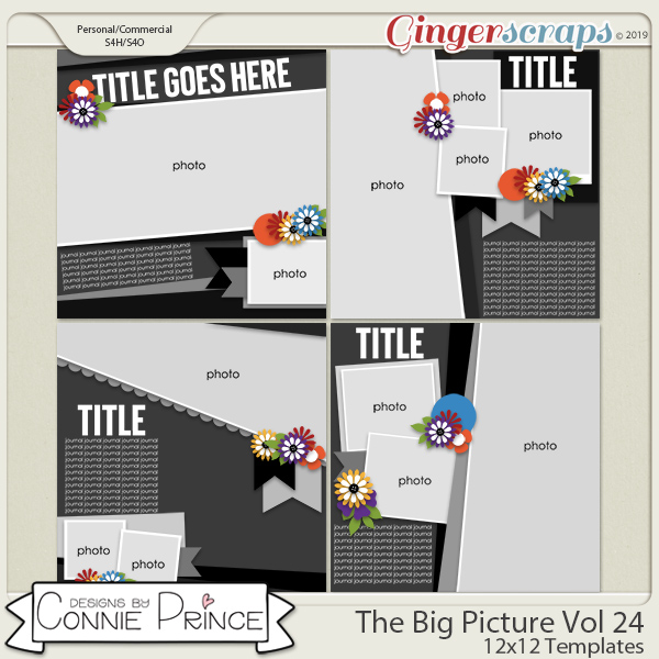 The Big Picture Volume 24 - 12x12 Temps (CU Ok) by Connie Prince
