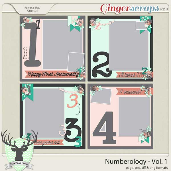 Numerology Vol 1