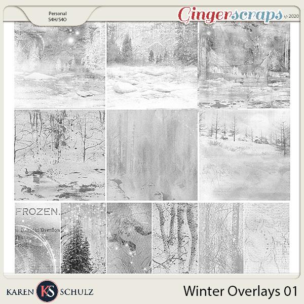 Winter Overlays 01 by Karen Schulz