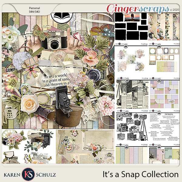 Its a Snap Collection by Karen Schulz and ADB Designs