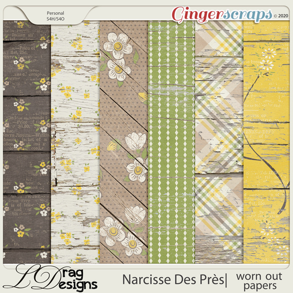 Narcisse Des Près: Worn Out Papers by LDragDesigns