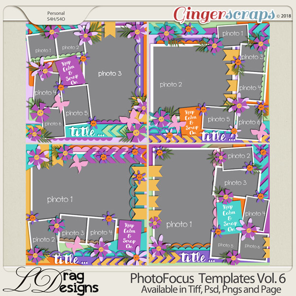 Photo Focus Templates Vol. 6 by LDragDesigns
