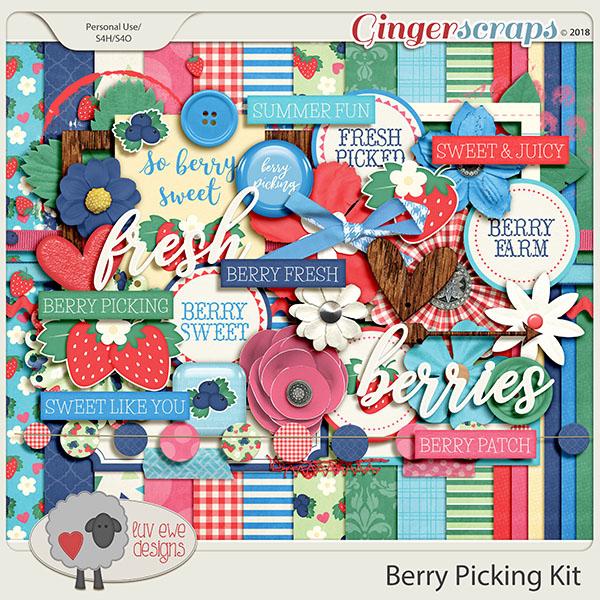 Berry Picking Kit by Luv Ewe Designs
