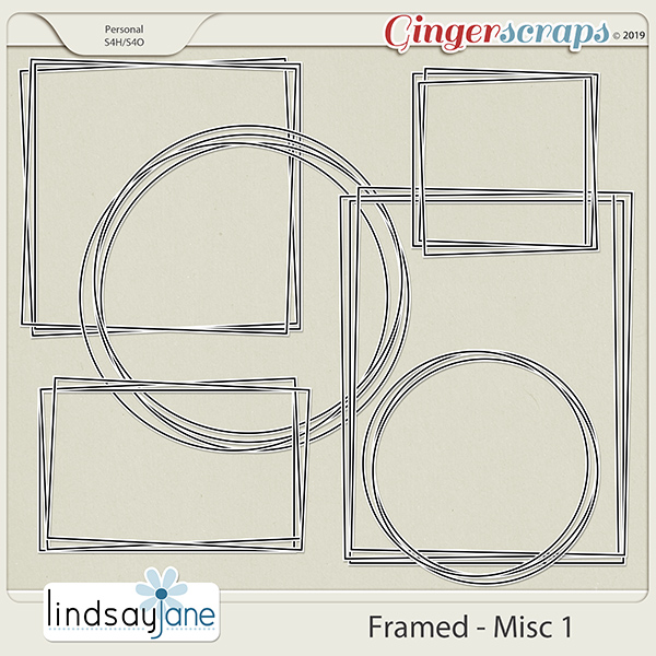 Framed Misc 1 by Lindsay Jane