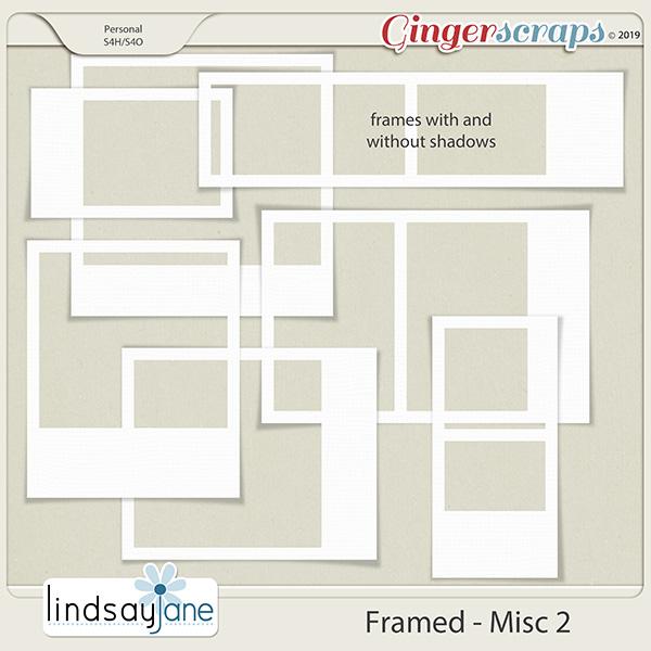 Framed Misc 2 by Lindsay Jane