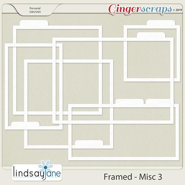 Framed Misc 3 by Lindsay Jane