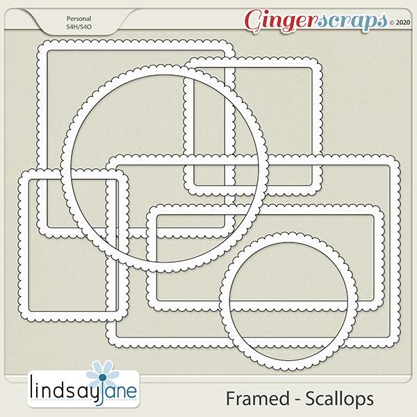 Framed Scallops by Lindsay Jane