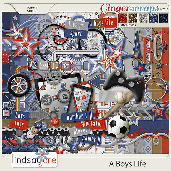 A Boys Life by Lindsay Jane