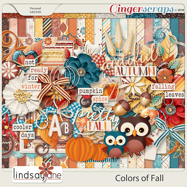 Colors of Fall by Lindsay Jane
