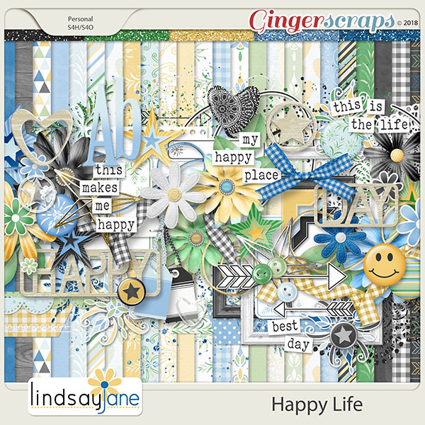 Happy Life by Lindsay Jane
